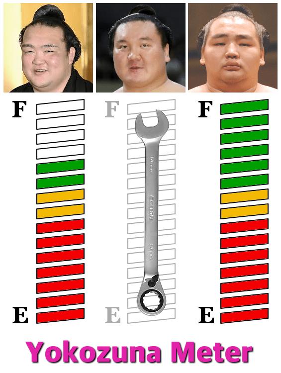yokozunameter-hatsu-2018-day5