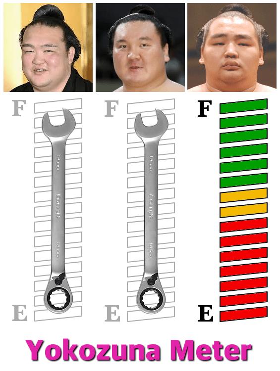 yokozunameter-hatsu-2018-day6