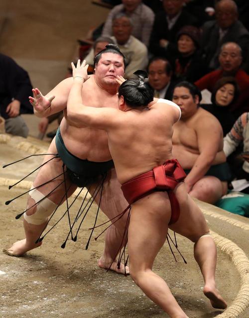 yutakayama-abi