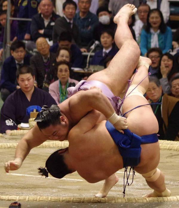 kotoeko-terutsuyoshi