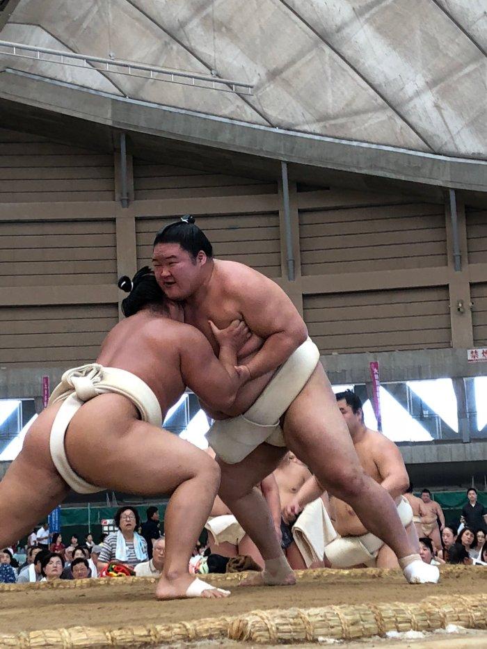 goeido-butsukari-tobizaru