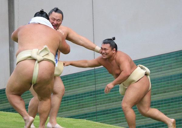 playful-rikishi