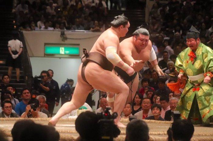 Hakuho 800 Wins