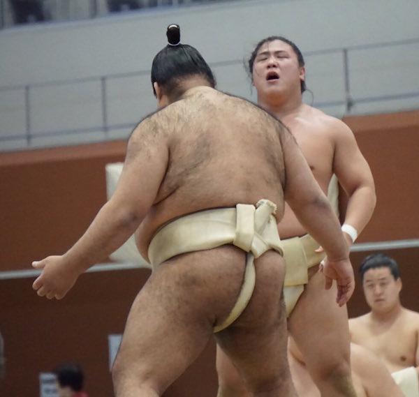 takayasu-butsukari-wakatakakage