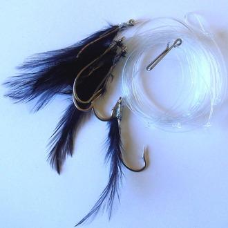 black mackeral