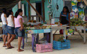 Vegetable shopping san pedro belize