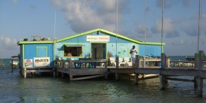 Ecologic Dive shop and Catamaran trips