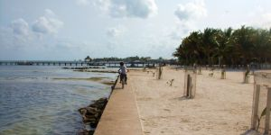 Daily Belize Blog