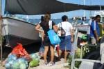 Tuesday Morning Market at the Lagoon