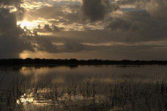 Sunrise over the lagoon at Crooked Tree Wildlife Sanctuary - copyright by Kate Joynes-Burgess