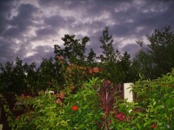 Ambergris Caye Belize Weather