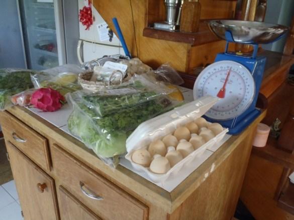 Healthy Belize organic produce - organic eggs Belize