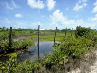 San Pedro Belize airstrip