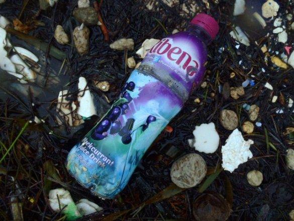 belize beach trash after a storm
