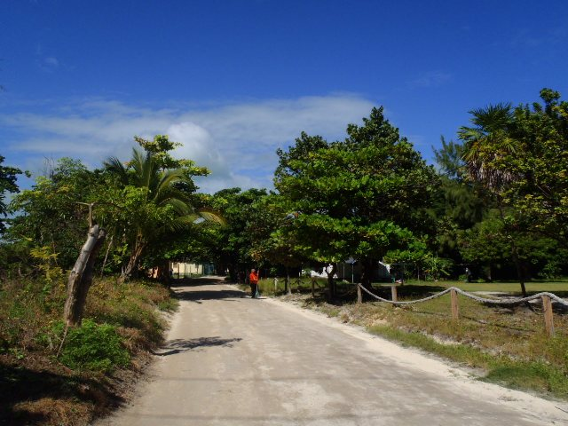 san pedro town ambergris caye belize picture
