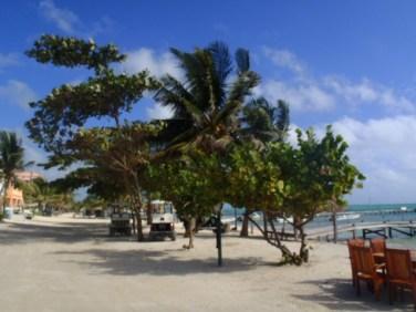 downtown town san pedro belize beach pictures