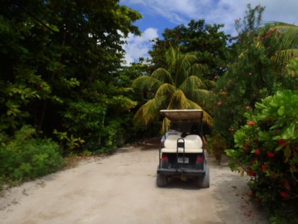 tropical drive ambergris caye