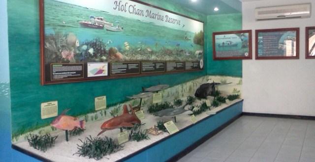 Hol Chan Marine Museum