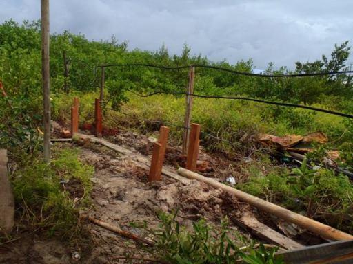 waste water garden san pedro belize