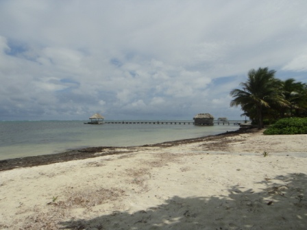 weather in san pedro belize