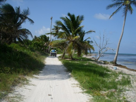 north ambergris caye