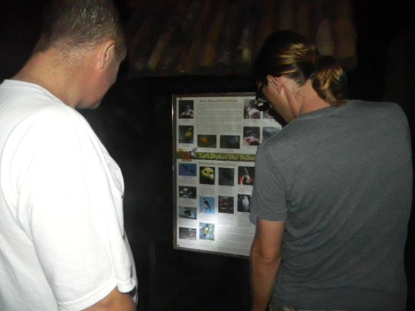 Belize Zoo Night Tour