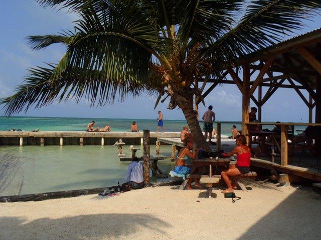 lazy lizard beach bar at caye caulker split