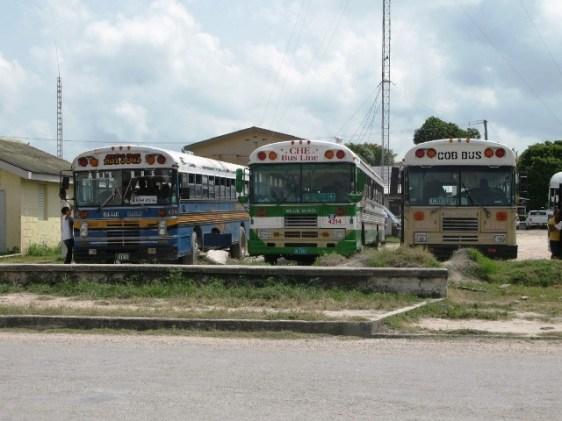 belize bus