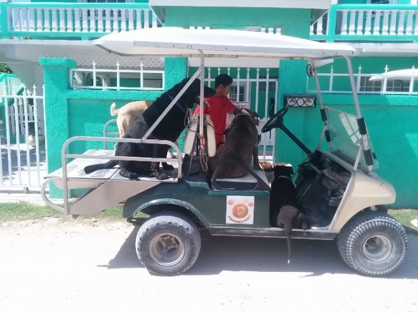 Recycling in Belize