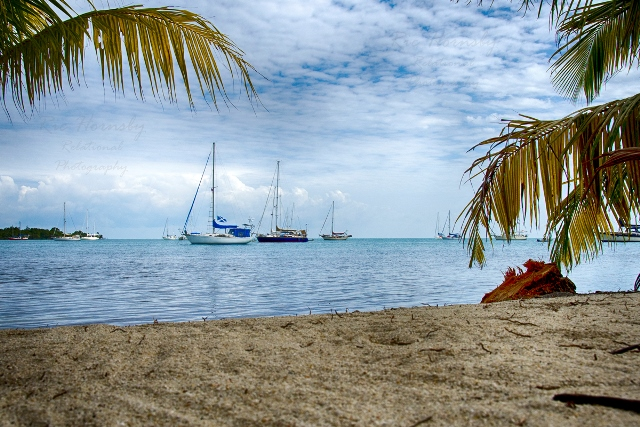Placencia Belize Beach Ric Hornsby