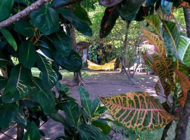 Hammock hanging San Pedro Belize