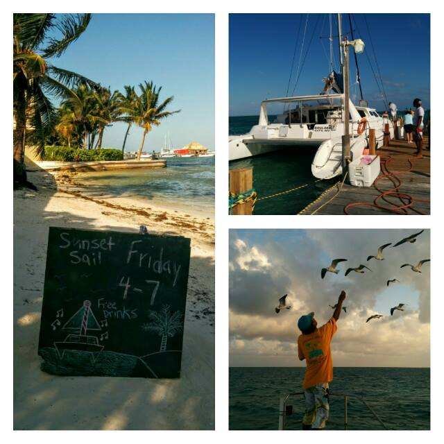 Ecologic divers Belize