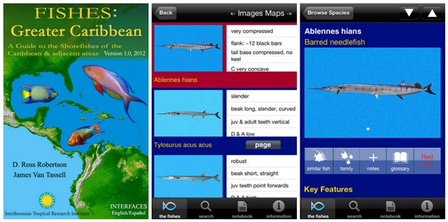 Greater Caribbean Fishing App
