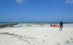 2016 Belize Reef Week