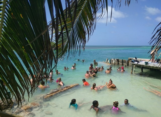 Lazy Lizard Caye Caulker Split