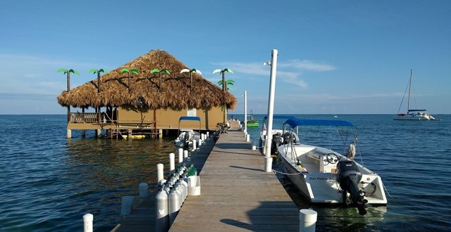 Palapa Bar Phoenix Rising from the Caribbean Sea