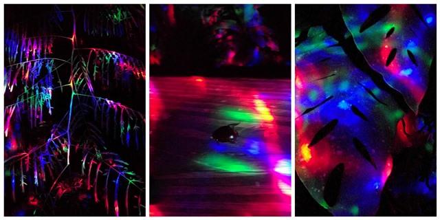 Disco Flashlight