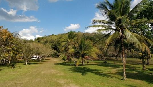 In the Trees Writer's Retreat, Benque Viejo Del Carmen Belize