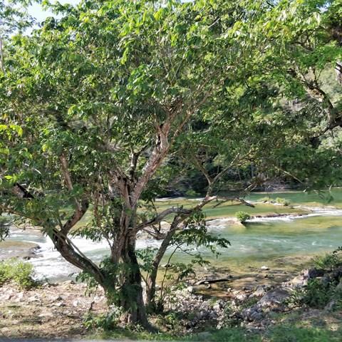Mainland Belize