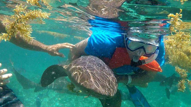 Snorkeling Hol Chan Belize