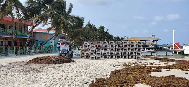 Lobster traps on beach walk ambergris caye