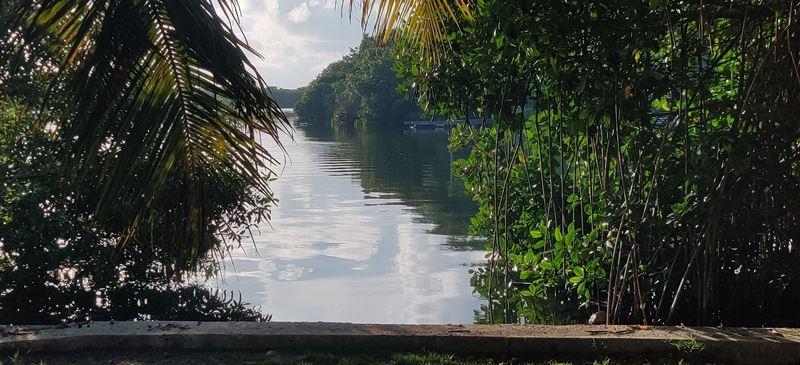 boca del rio backyard