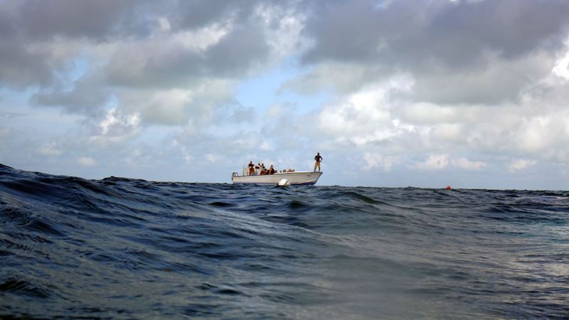 snorkeling and diving tour belize
