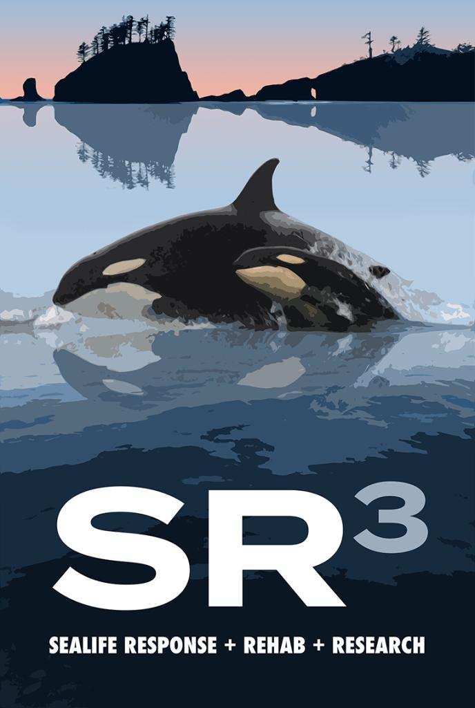 SR 3 logo