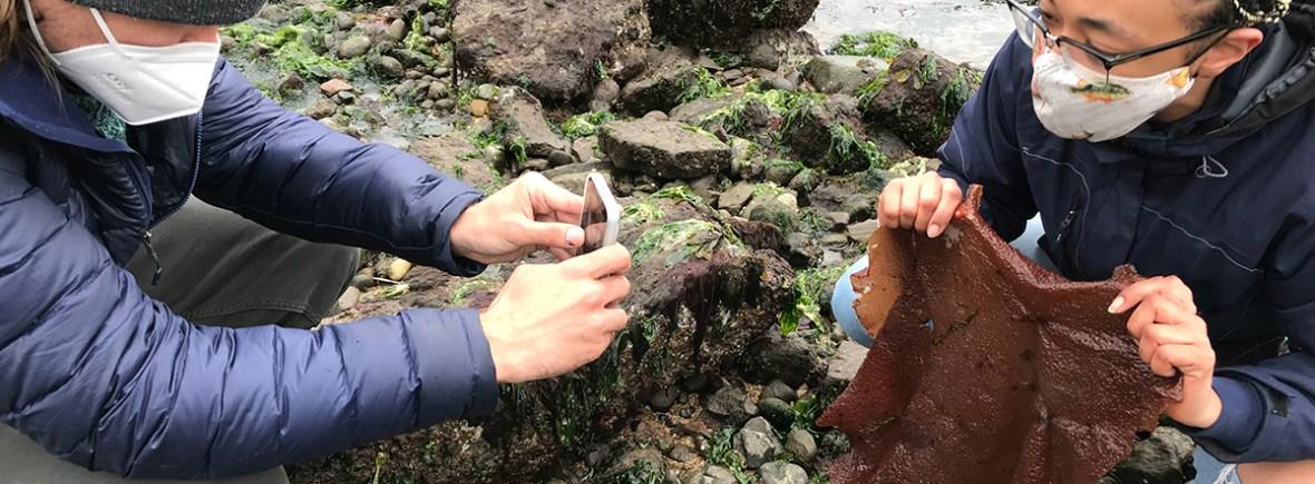 marine biologist at beach