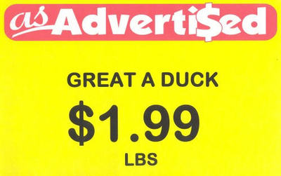 Great_a_duck_2