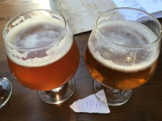 Left: Zepplin IPA; Right: Devil's Peak IPA