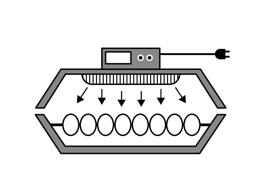 Incubator de ouă