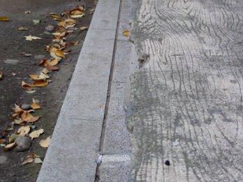 O banco, as folhas... Adoro texturas