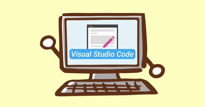 visual studio code image
